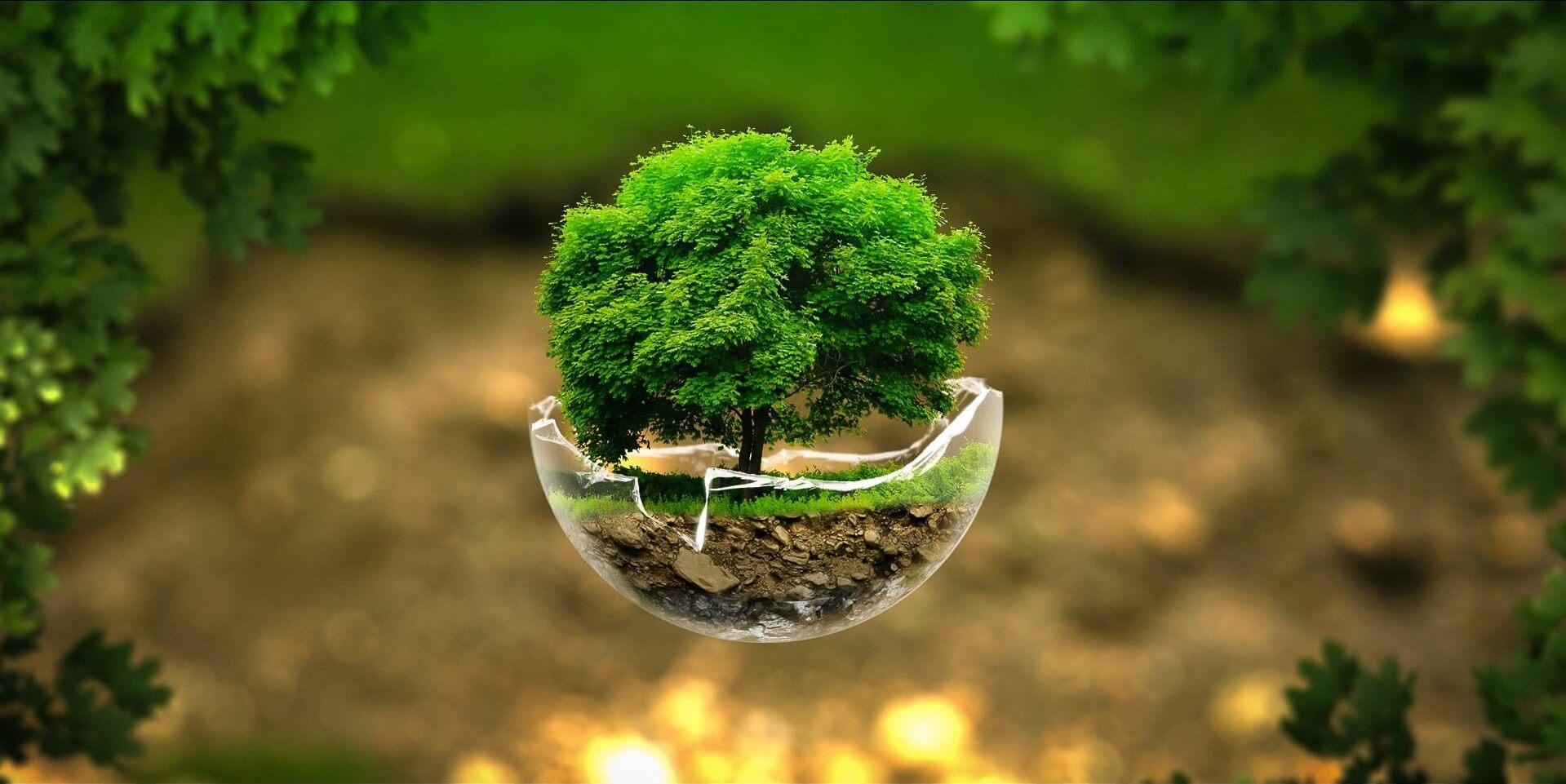 Изображение_Современные тенденции в биоэнергетике_58