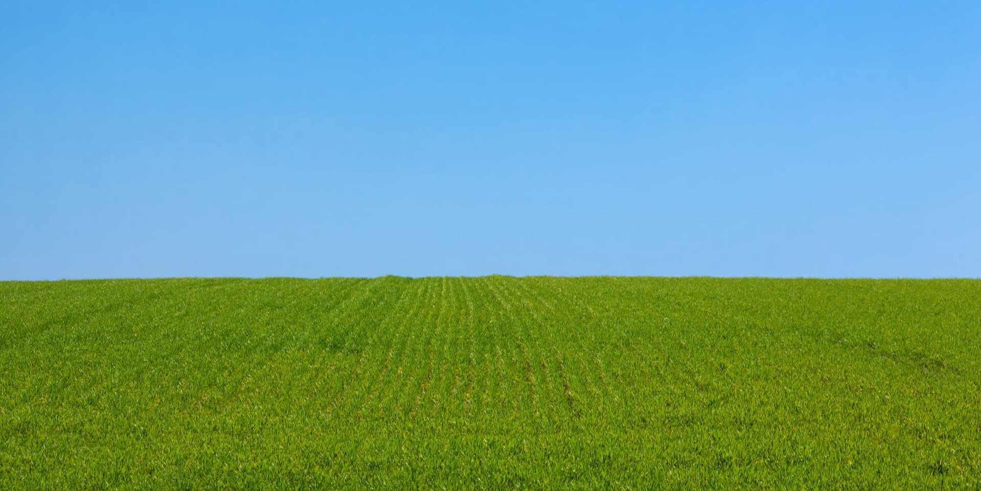 Выбор твердого биотоплива
