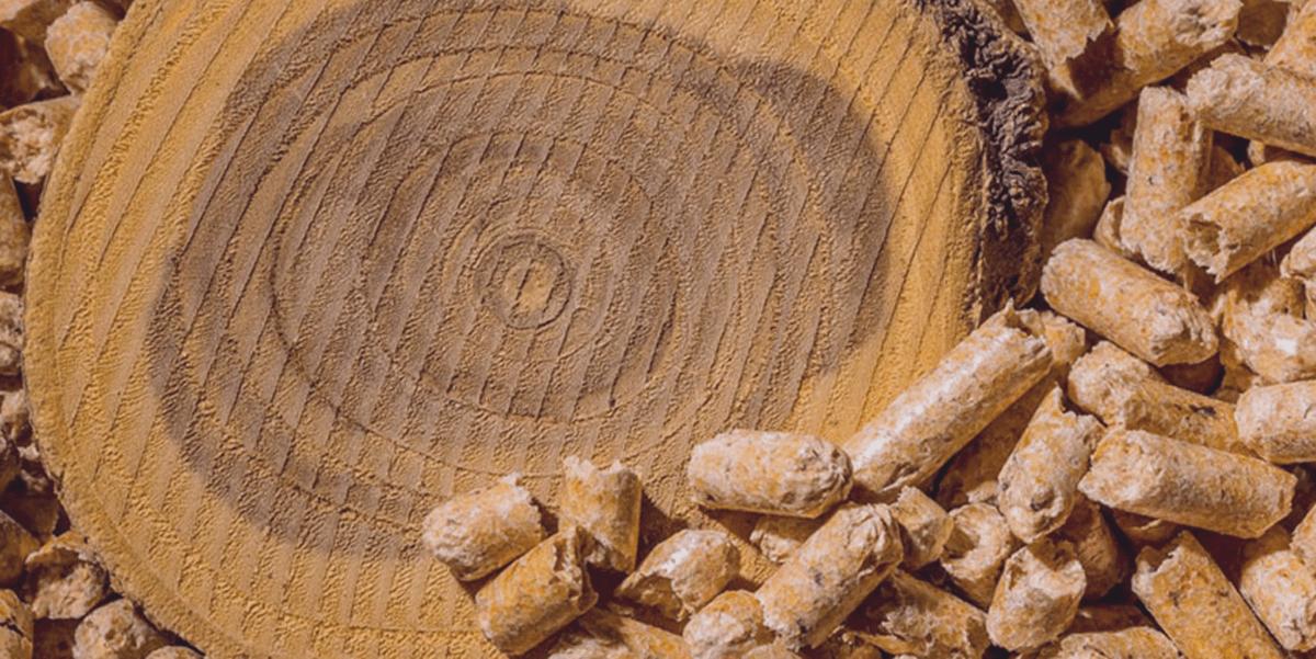 Изображение_Твердое биотопливо в Украине_713