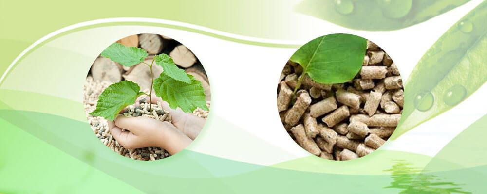 Твердое биотопливо и экология