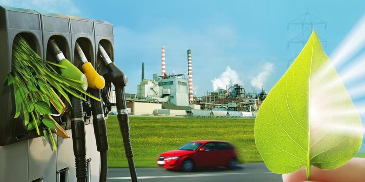 """Изображение_Конгрес і виставка """"Біомаса: паливо і енергія"""". Підсумки._2451"""