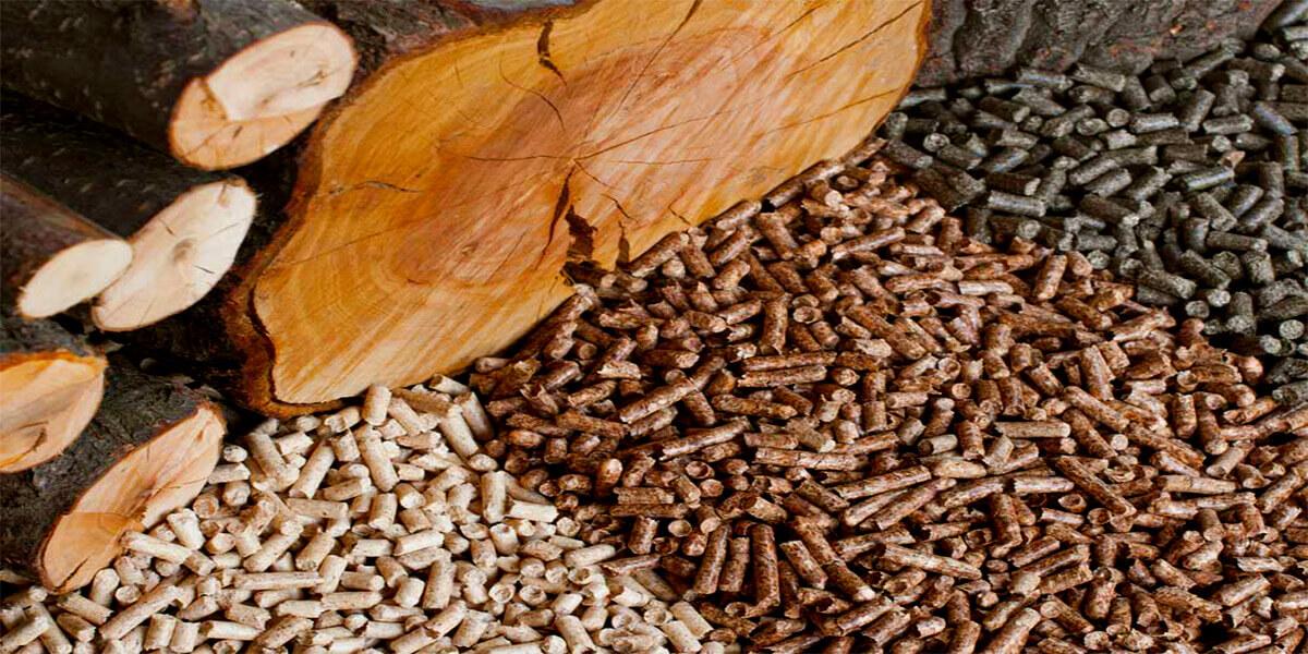 Изображение_Сравнение пеллеты из лузги подсолнуха и древесной пеллеты_3196