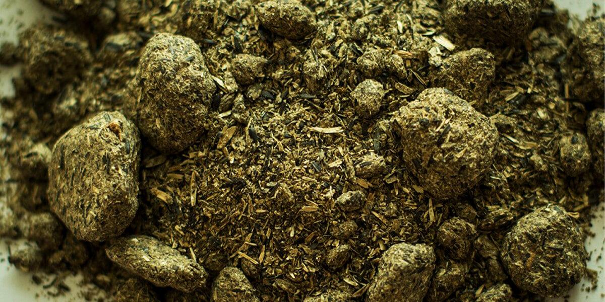 Изображение_Шрот из лузги подсолнечника как сырье для биотоплива_3435